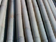 HBF-PL016(Bamboo fishing rods)